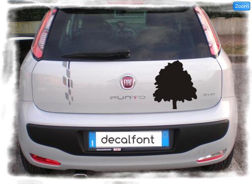 L'effetto dell'adesivo vetrofania-faggio su una Fiat Punto