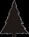 albero-pino