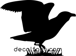Adesivo Albatros 2